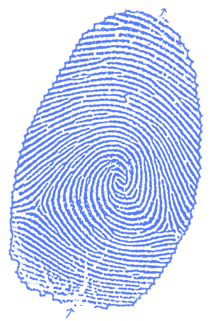 JW_thumbprint_with_border_maze